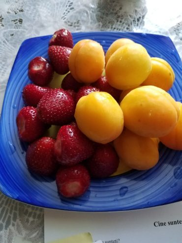 Strawberries and apricots fresh from the grădină